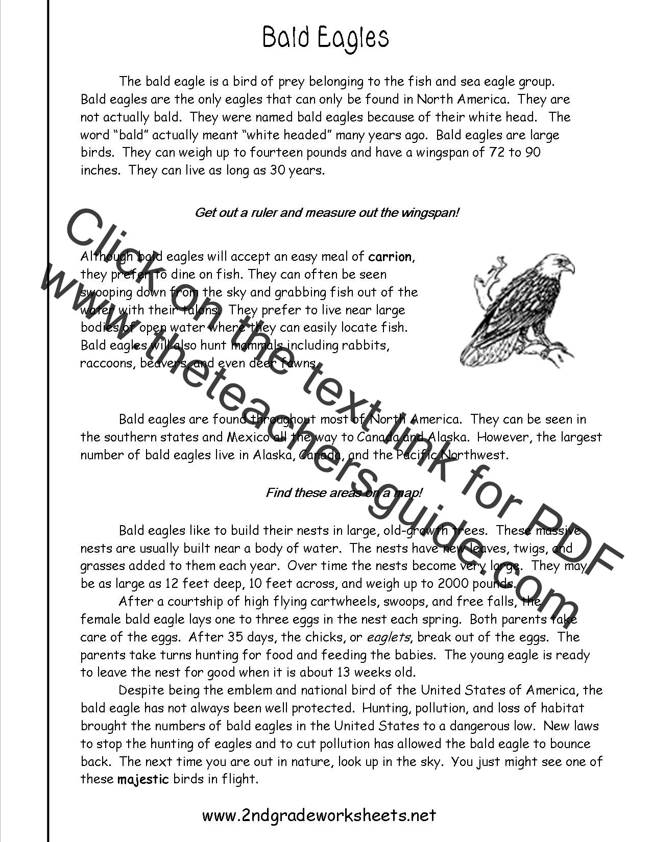 Reading Informational Text Worksheets Reading Informational Text Worksheets