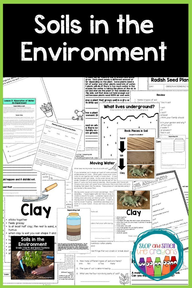 Soil Worksheets 3rd Grade Grade 3 Science Unit Covers the Importance Of soil