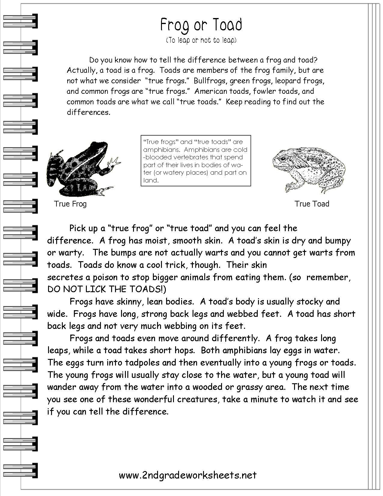 Text Features Worksheets 2nd Grade Reading Informational Text Worksheets