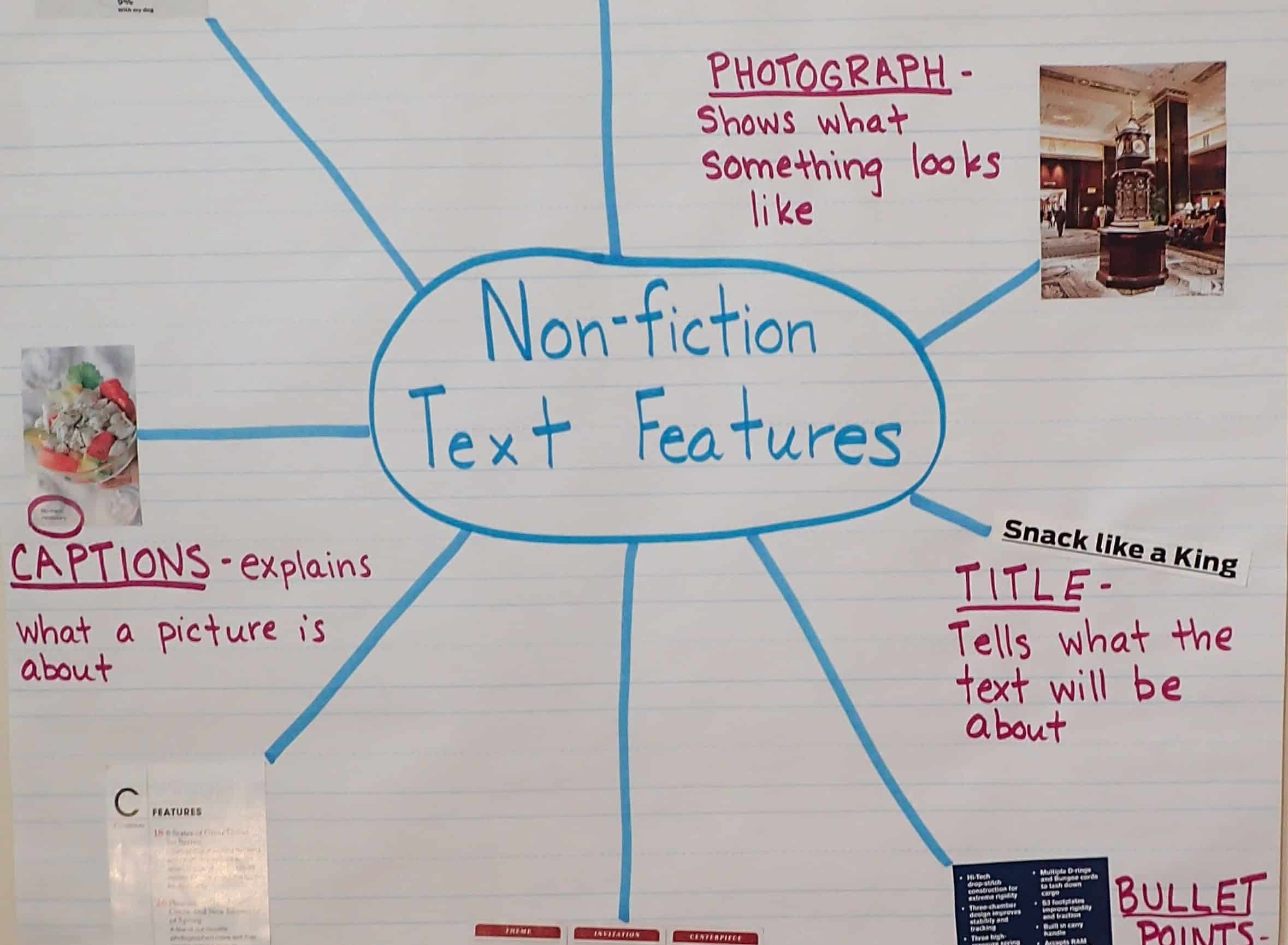 Text Features Worksheets 2nd Grade Text Features Engaging Activities Teaching Made Practical