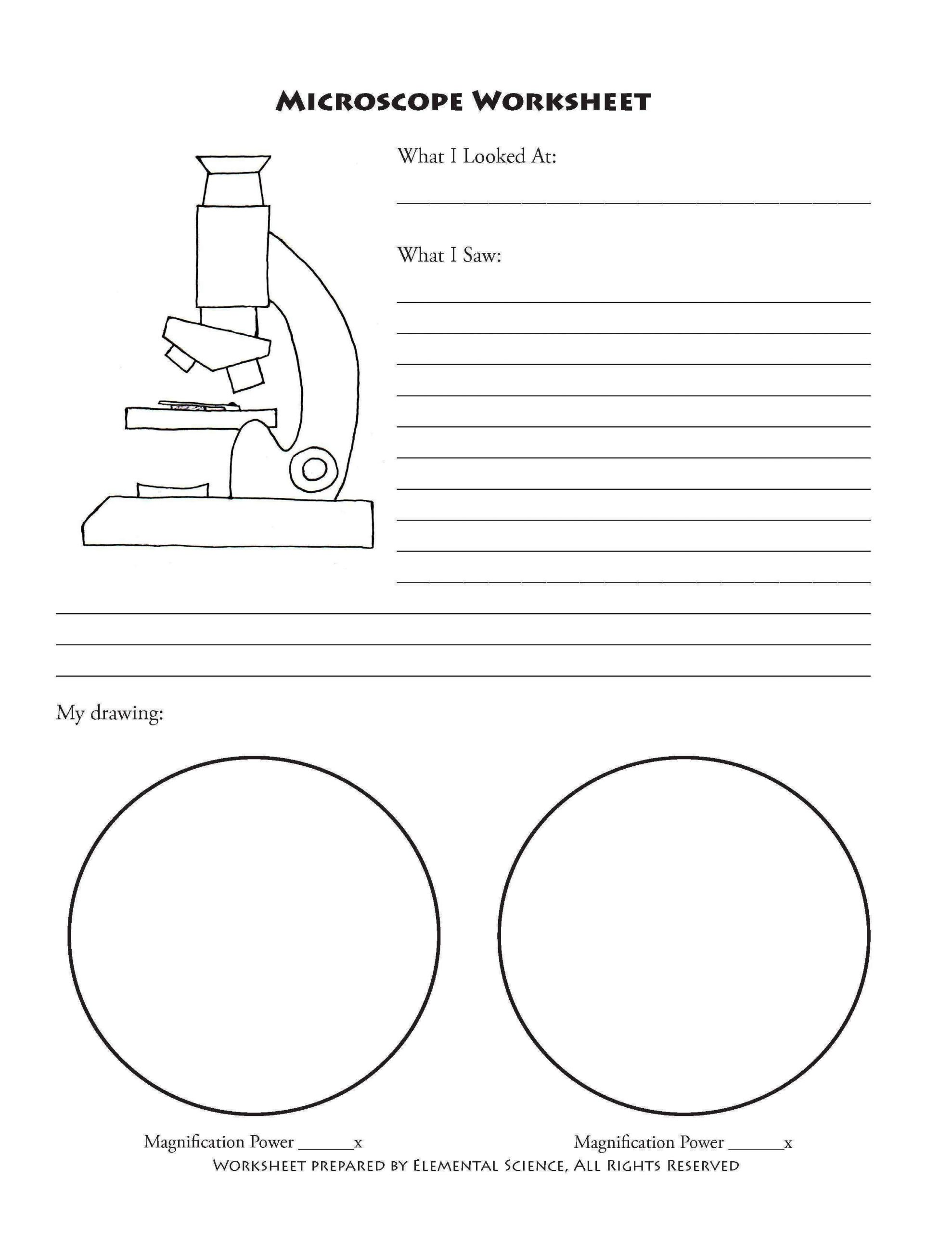 Zoology Worksheets High School Free Microscope Notebooking Printables From Elemental