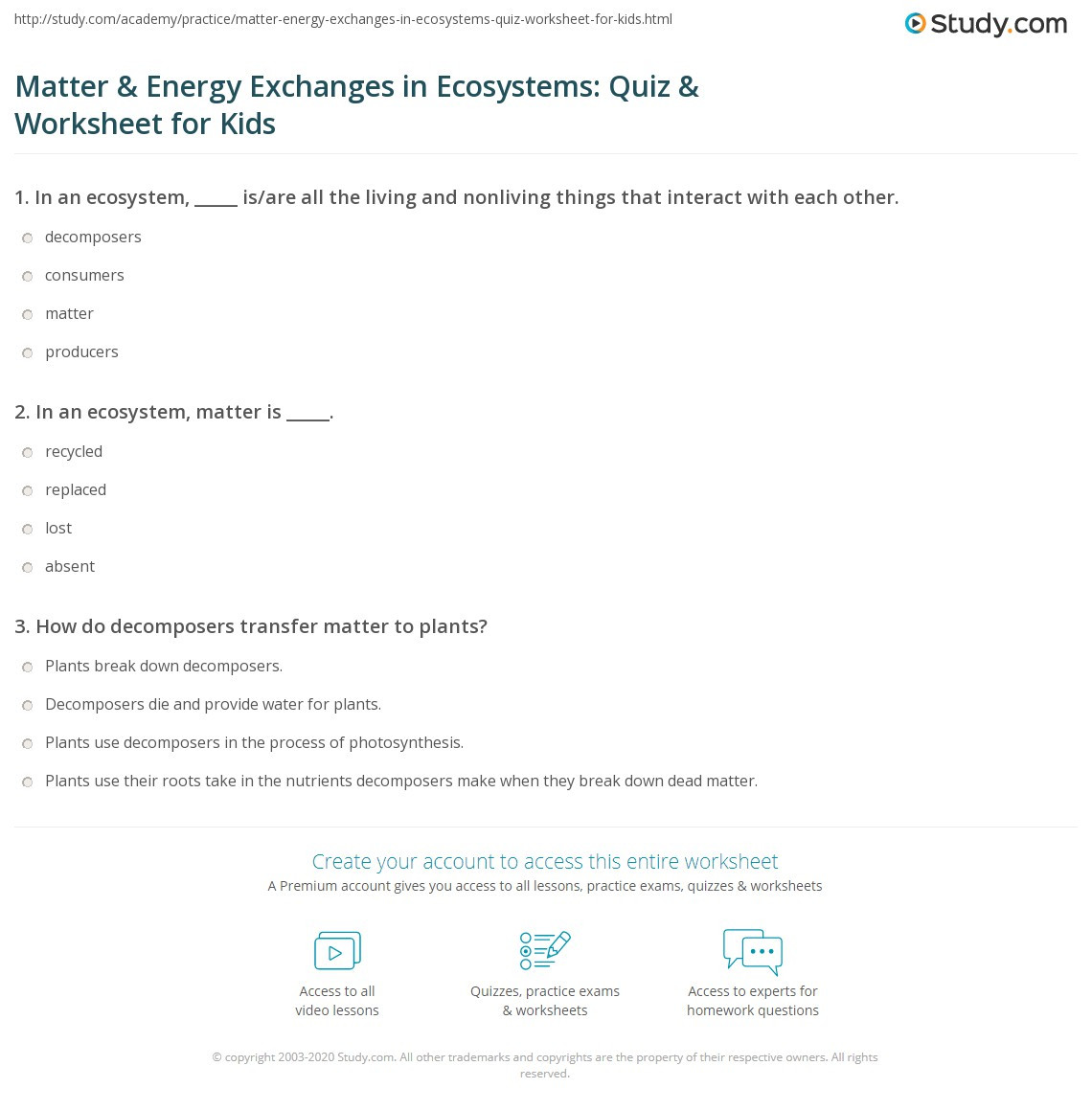 5th Grade Ecosystem Worksheets Matter & Energy Exchanges In Ecosystems Quiz & Worksheet