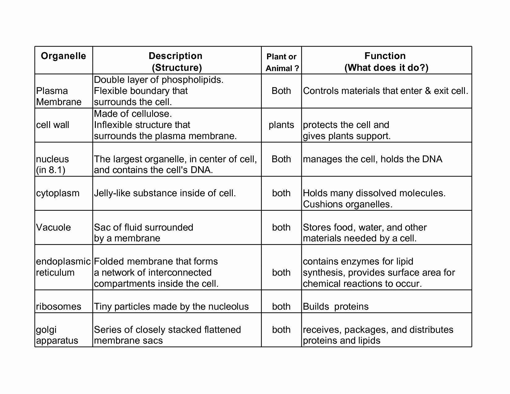 9th Grade Biology Worksheets Cell Biology Worksheet High School
