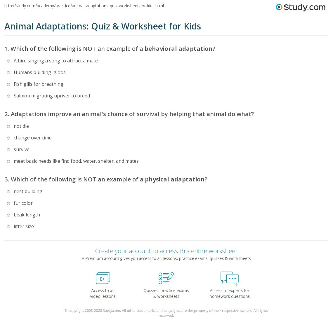 Adaptation Worksheets for Middle School Animal Adaptations Quiz & Worksheet for Kids