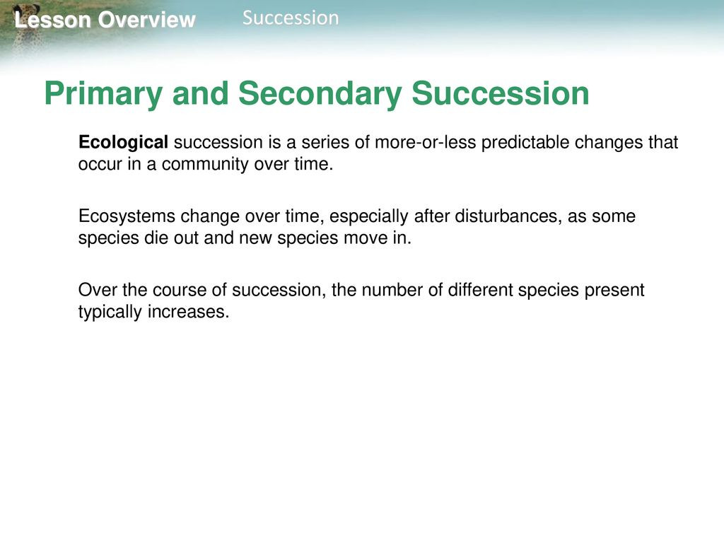 Ecological Succession Worksheet High School Lesson Overview 4 3 Succession Ppt