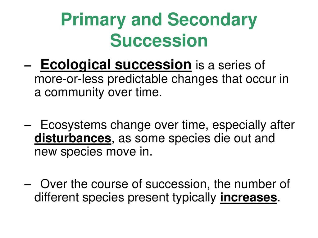 Ecological Succession Worksheet High School Lesson Overview Succession Ppt