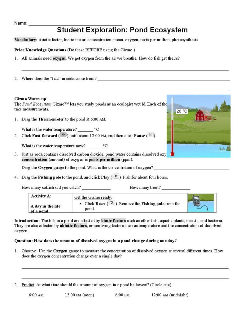 Ecosystem Worksheets 4th Grade Math Test 3 Mon Core Reading Worksheets 1st Grade Science