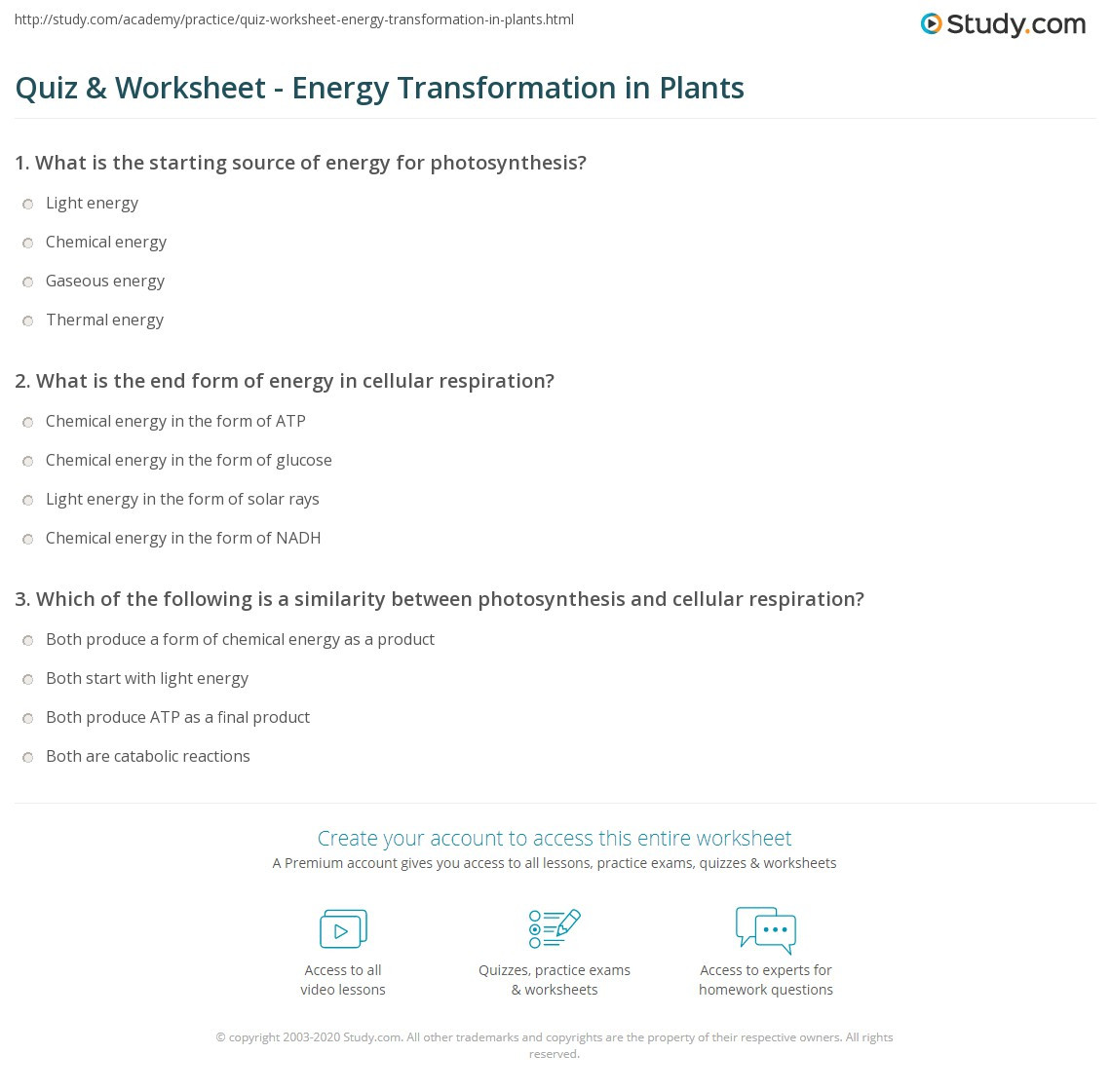 Energy Transformation Worksheet Middle School Quiz & Worksheet Energy Transformation In Plants