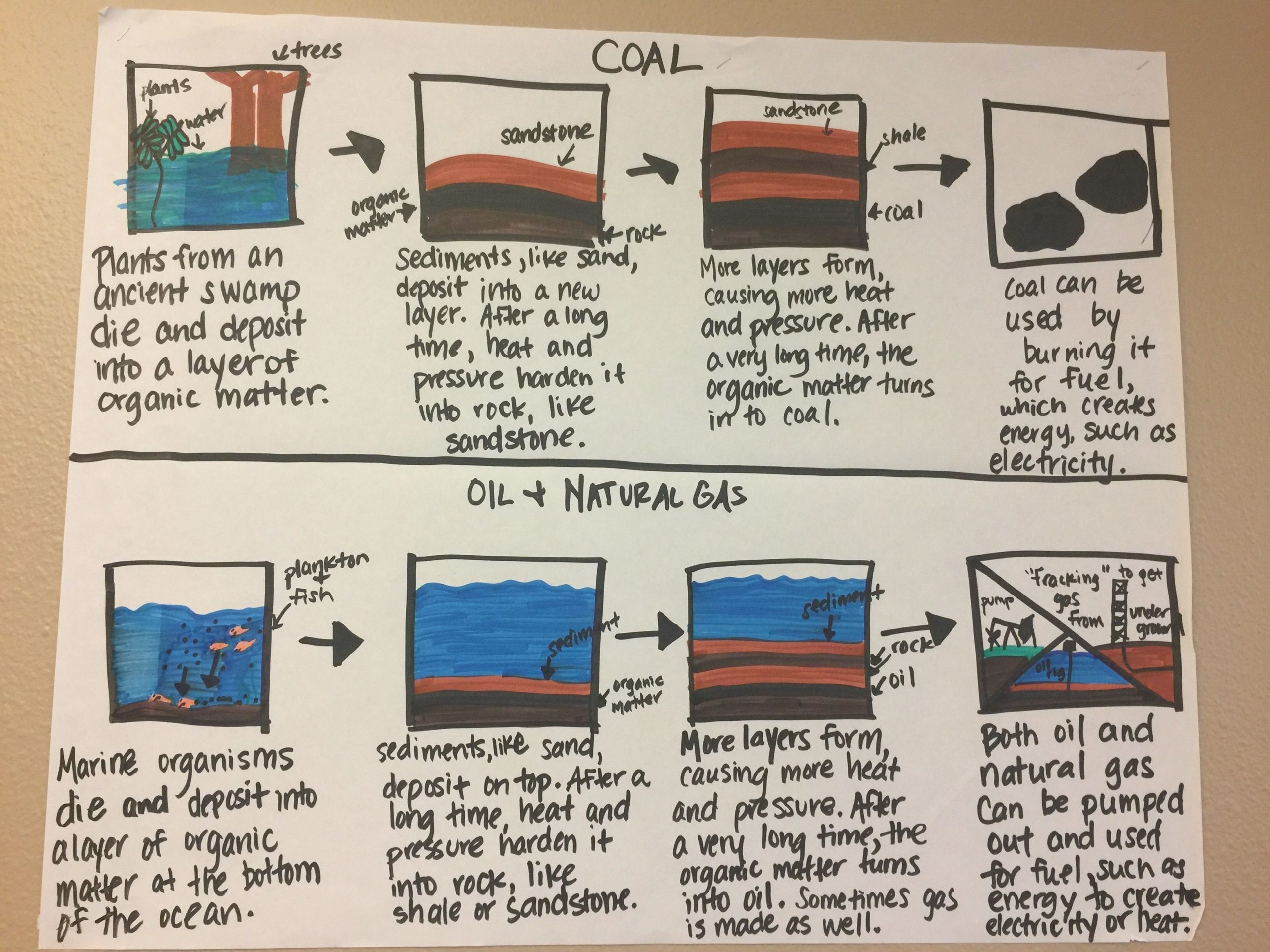 Fossil Fuels Worksheet Middle School Fossil Fuels Anchor Chart