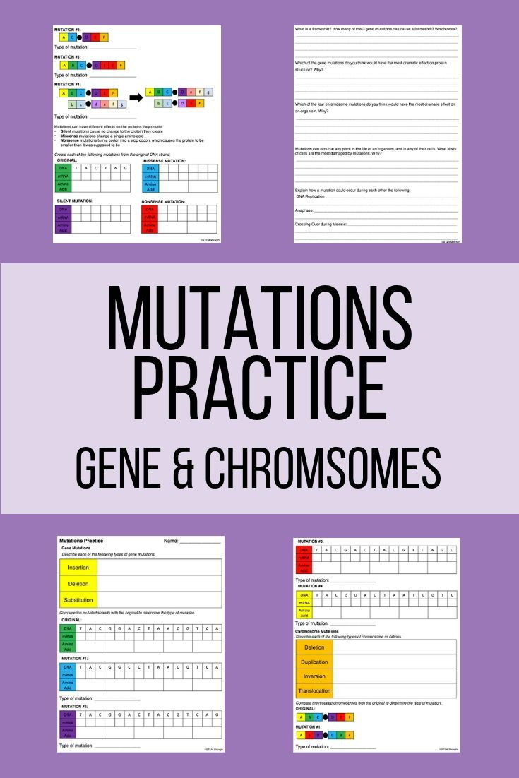 Mutations Worksheet Middle School Help Your Students Practice Determining Mutations with This