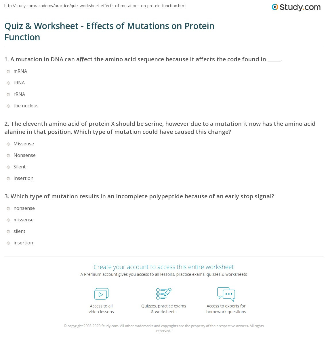 Mutations Worksheet Middle School Quiz & Worksheet Effects Of Mutations On Protein Function