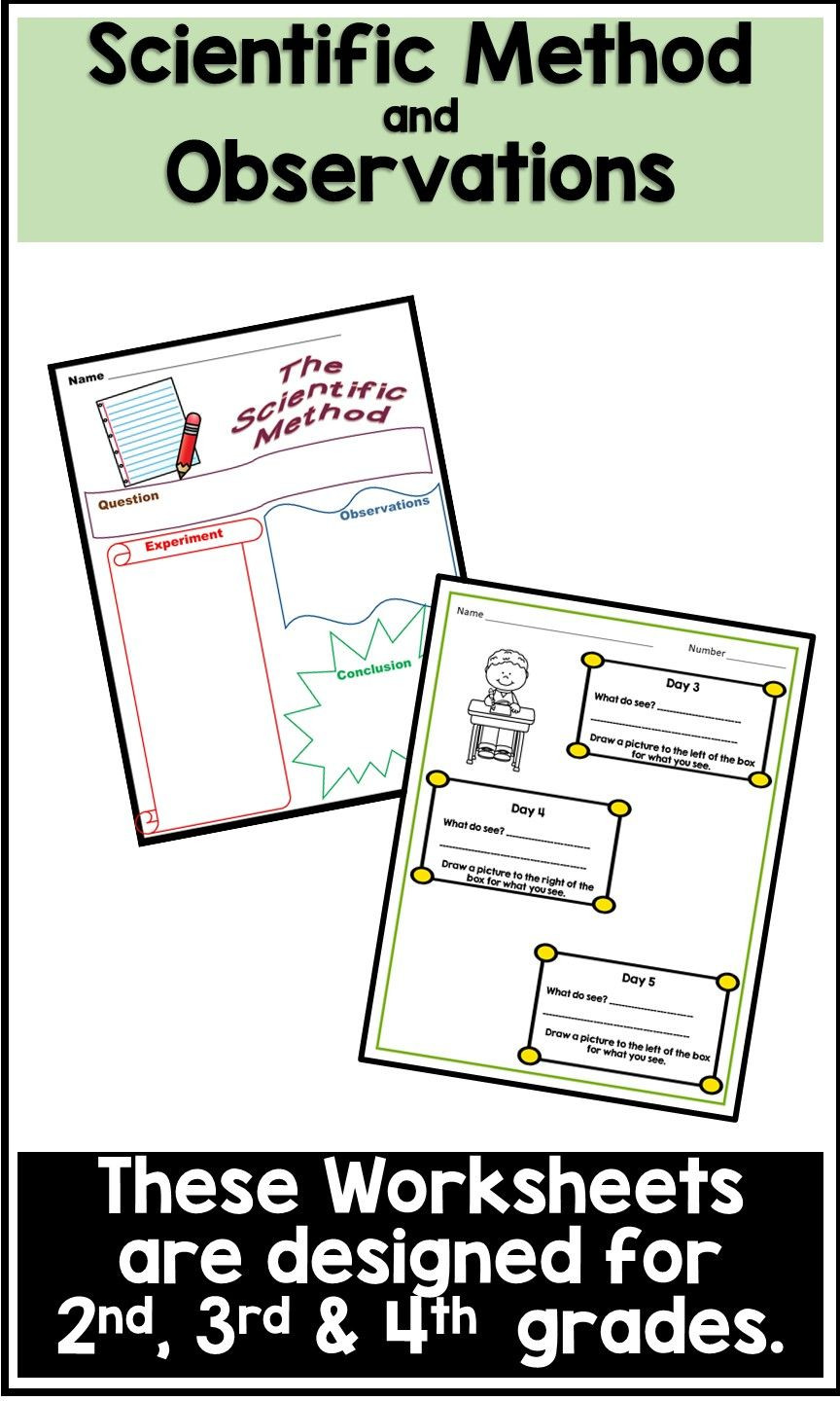 Scientific Method 3rd Grade Worksheet the Scientific Method for Lower Elementary