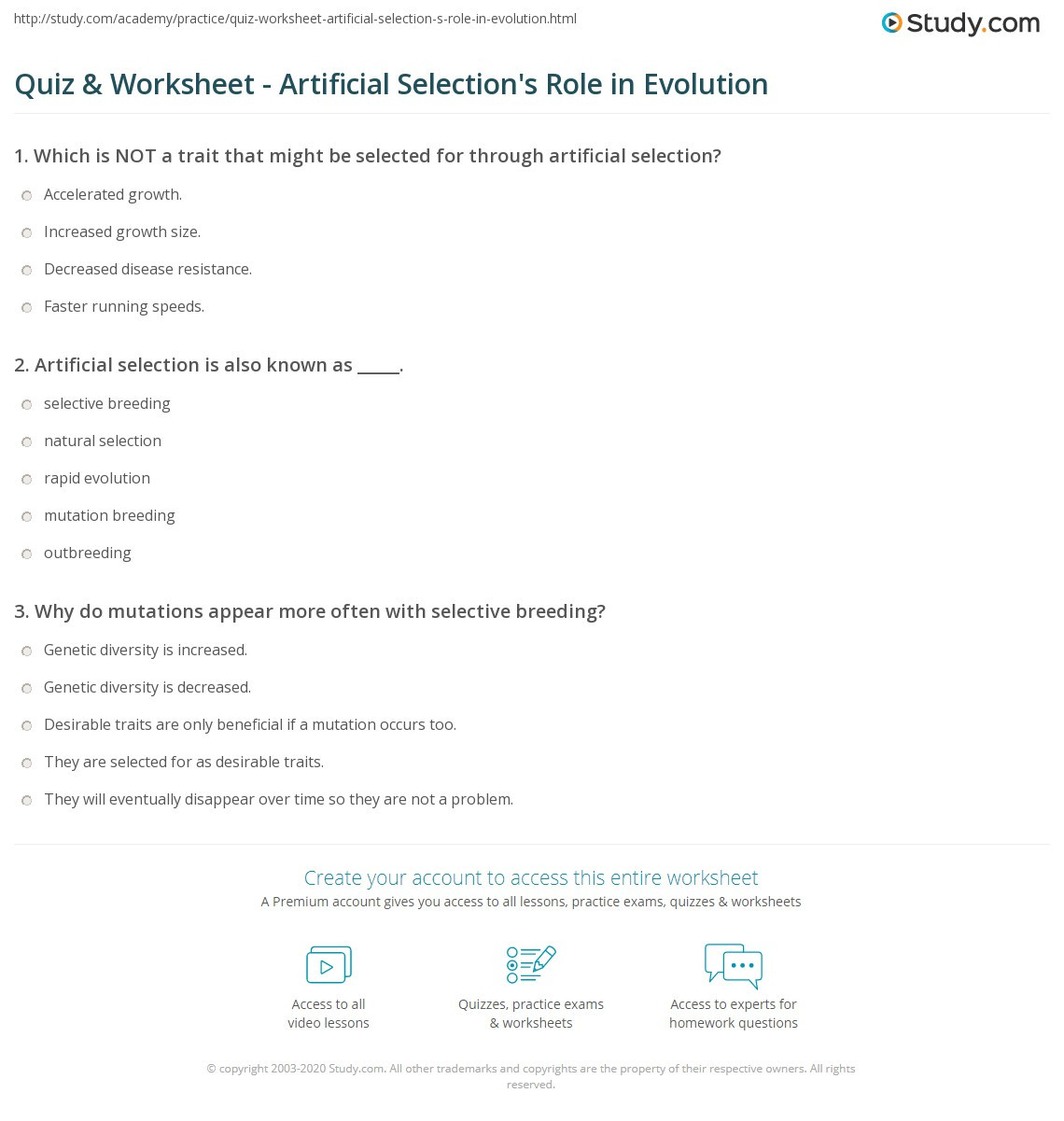 Selective Breeding Worksheet Middle School Quiz & Worksheet Artificial Selection S Role In Evolution