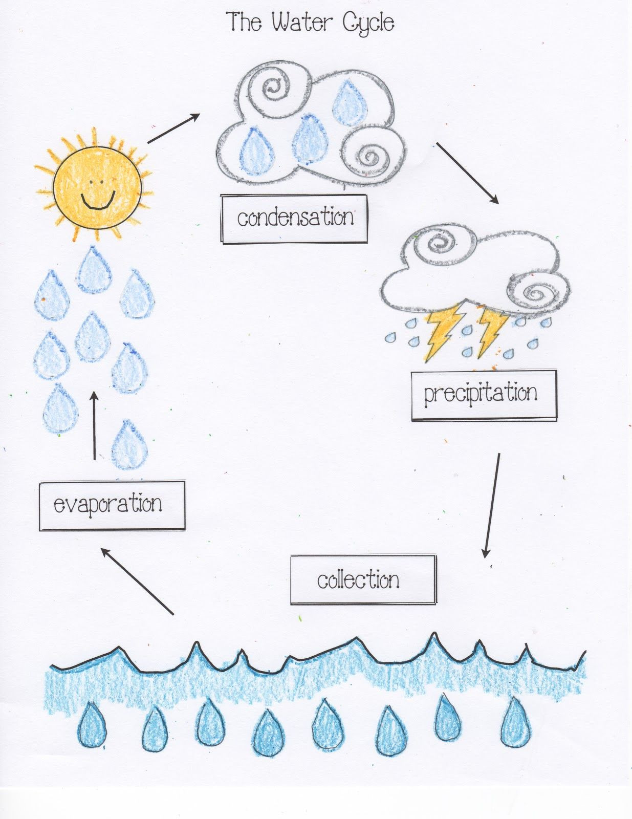 Water Cycle Worksheet 4th Grade Water Cycle Activities Classroom Freebies