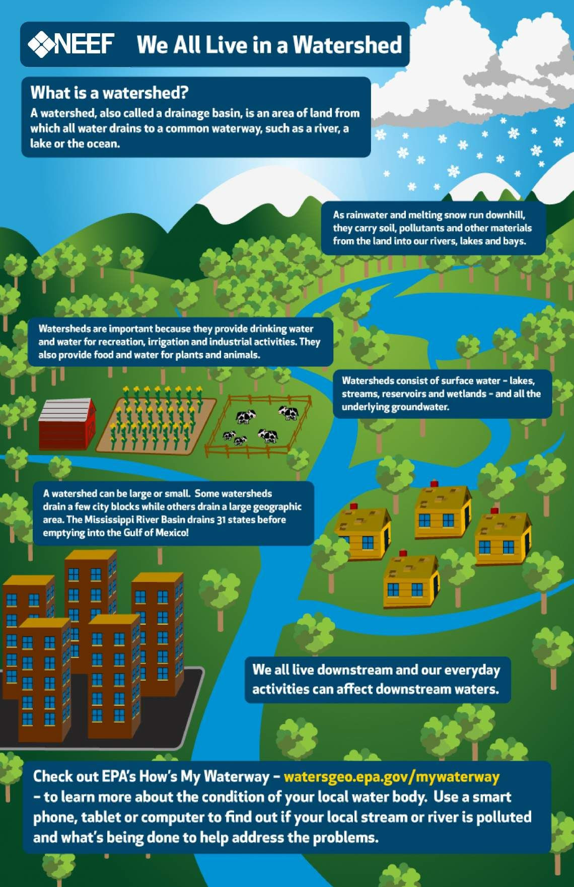Water Quality Worksheet Middle School Neef Infographic We All Live In A Watershed